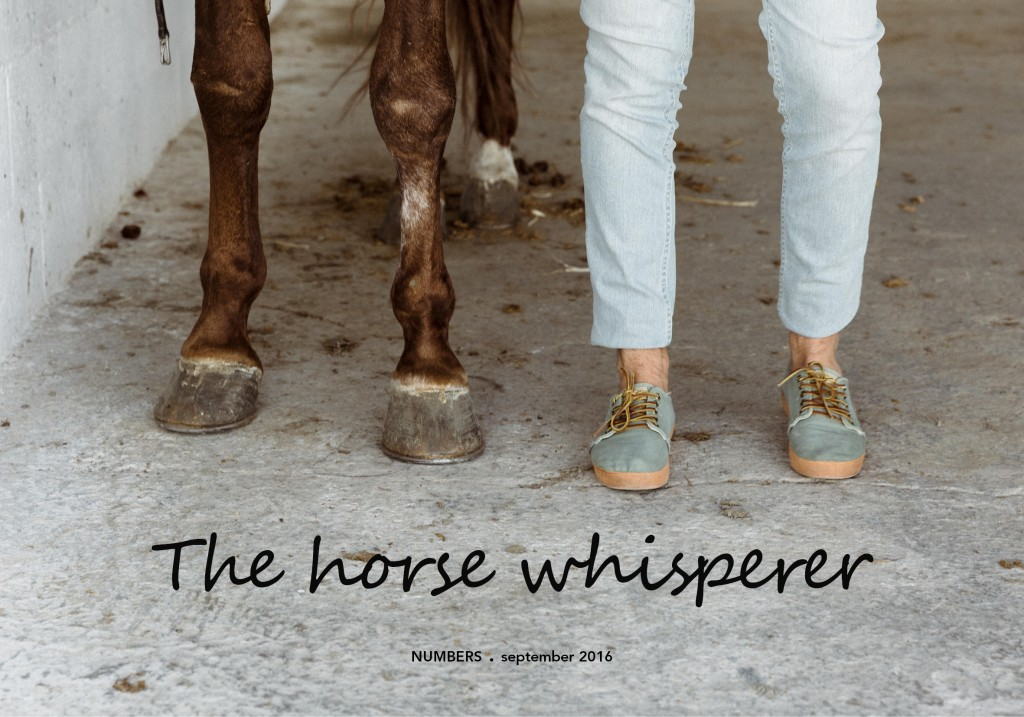 the-horse-whisperer-numbers