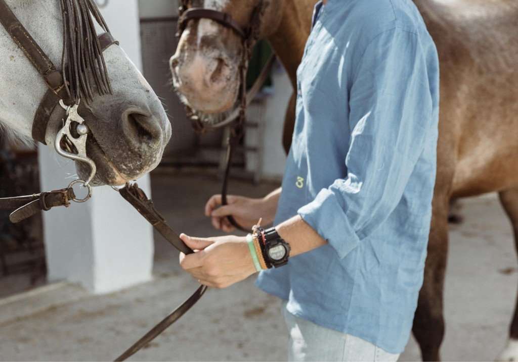 the-horse-whisperer-numbers15